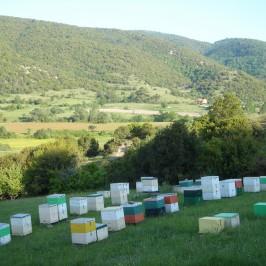 Τα μελισσοκομεία μας στον Ολυμπο 2